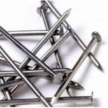 Hot Sales Round Iron Common Nails with Good Quality