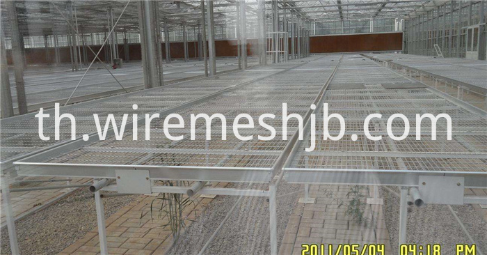 Seedling Bed Mesh