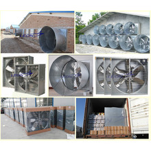 Centrifugal exhaust fan for livestock and poultry farm