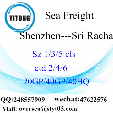 Shenzhen Port Sea Freight Shipping à Sri Racha