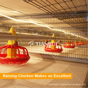 Tianrui Raising Broiler Poultry Automatic Birds Feeding System