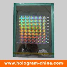 Пользовательских 2D/3D лазерной безопасности голографической Мастер