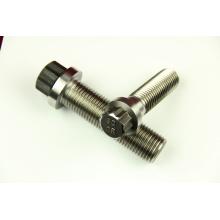 Hochwertige Torx Head Titanium (M6-M14) Schraube