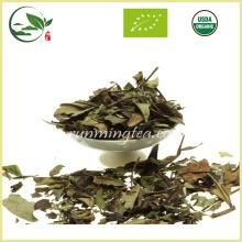 Té blanco fresco orgánico de Pai Mu Tan