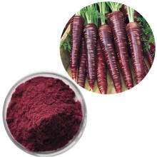 Pó de extrato de cenoura preta com antocianidinas 100% naturais