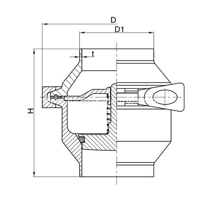 sanitary check valve weld
