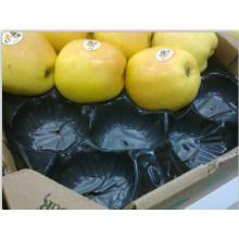 China Productor profesional SGS, embalaje estándar de la ampolla de la fruta del FDA hecho de los PP para el protector, exhibición en supermercado