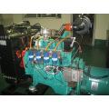 Natural Gas Generator Set (BCX30)