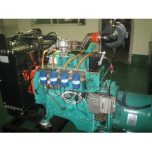 Erdgasgenerator-Set (BCX30)