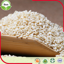 Export Natural Organic White Sesame