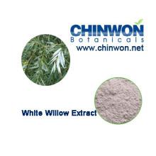 Factory Direct Versorgung White Weide Extrakt 98%