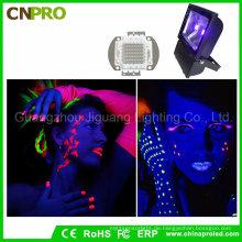 UVLED Flutlicht 390nm Blacklight 100W im Freien kurierend