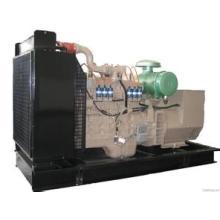 250kVA/200kw Biogas/LNG/LPG/CNG/Natural Gas Power Generator