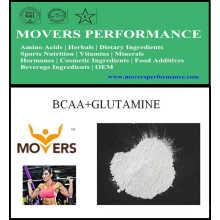 Vente chaude Culturisme Sports Nutrition Bcaa + Glutamine