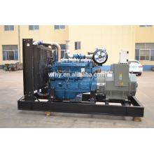 Energiegenerator 300kva offener Typ