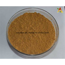 Natural Cocoa Extract 10% 20% Theobromine