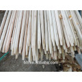 Chine Eucalyptus Wooden Stick