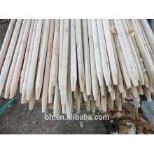 China Eucalyptus Wooden Stick