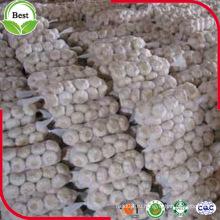 Новый урожай свежей фиолетовой кожи Красный чеснок Нормальный белый чеснок