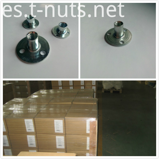 Round Base T nuts