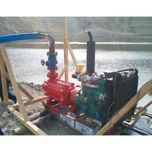 Multi-Stage Stationary Diesel Water Pump