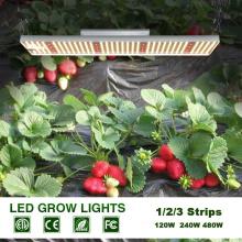 100W Grow Light Quantum Board