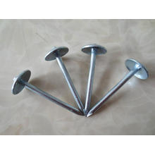 Pulido Umbrella Head Roofing Nails