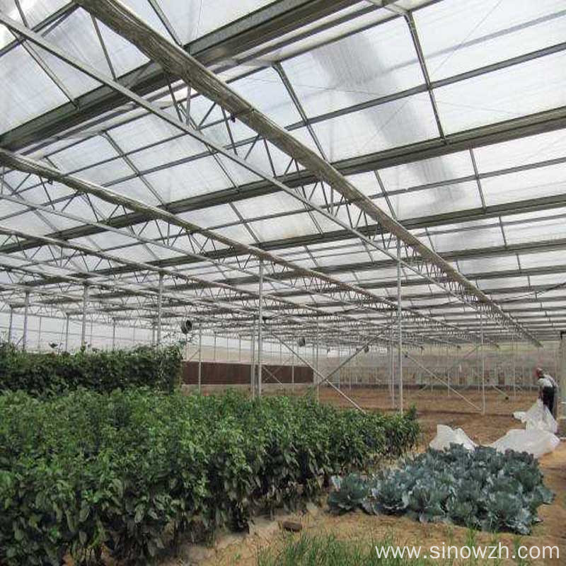 Design agriculturial glass steel structure greenhouse