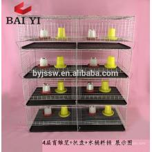 China fábrica novo design galvanizado bebê camada cauda gaiola para venda