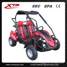 2 Seat Gas Mini Buggy for Kids