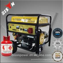 BISON China Taizhou 2.5kw AC monofásico CE portátil 2.5kva Gás Gerador Preço Uso doméstico