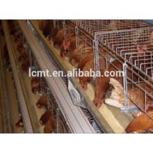 Chine Fabricant Vente Chaude Automatique Poulet Alimentation Système