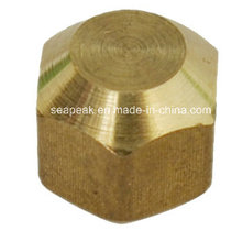 Brass Flare Fitting/Pipe Fittings