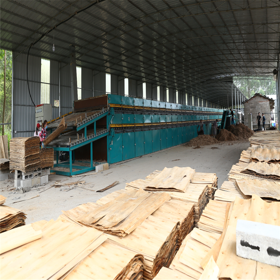 Biomass Burner Type Veneer Dryer