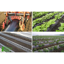 Factory direct custom high-end quality Plastic film roll agriculture biodegradation