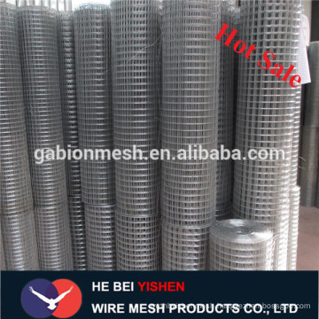 High quality galvanized wire mesh/welded wire mesh