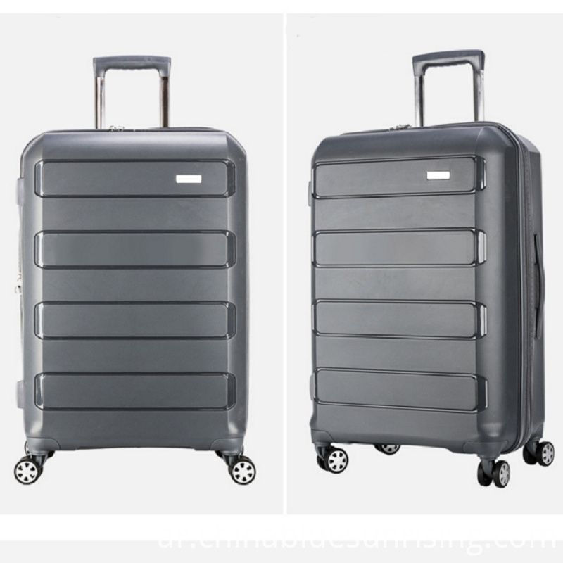 Gray Pp Luggage