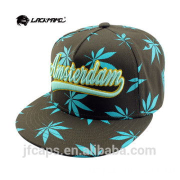 Drucken Stickerei Hip Hop Flat Snapback Cap