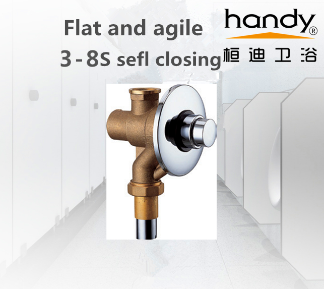 Flush Valve self closing