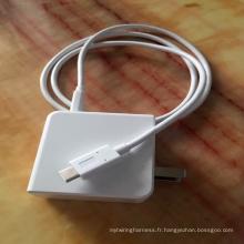 Courant de charge 5A, câble de type C à type C, norme de transmission de données: USB2.0
