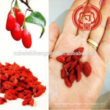 Conventional type or BCS Organic type or low pesticide type Ningxia miracle fruit-Goji berries Ningxia Medlar& Ningxia GOU QI