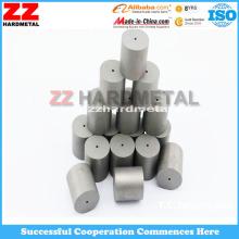 Hartmetall Die Core für Schimmel