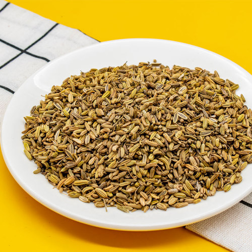 Fennel Seed High Quality Top Grade Wholesale
