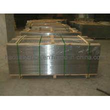 1mx2m geschweißte Wire Mesh Panel