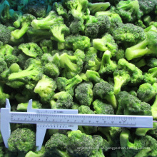 Hot Selling IQF Frozen Fresh Broccoli frozen vegetables