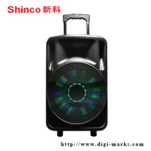 Indoor and Outdoor Speaker with Perfect Bass
