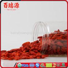 Berry goji health benefits of goji berries pianta goji
