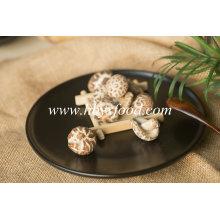 Top Sale 2.5-3cm Thin Tea Flower Mushroom Dry Vegetable