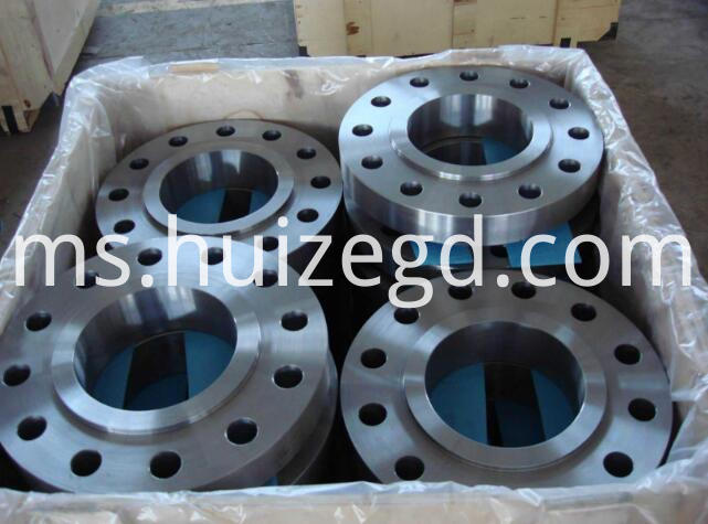 CL300 RF WN FLANGE
