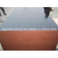 Film Faced Shuttering Plywood (1220*2440mm/1250*2500mm)